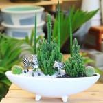 アニマルジオラマ×植物で癒し空間